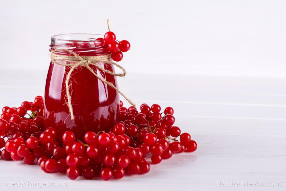Image: Cranberries offer an excellent way to boost your health, say nutrition researchers