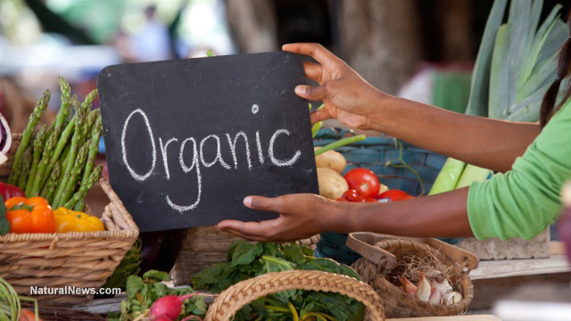 Image: Market for organic products continues to expand as consumers ditch unhealthy products