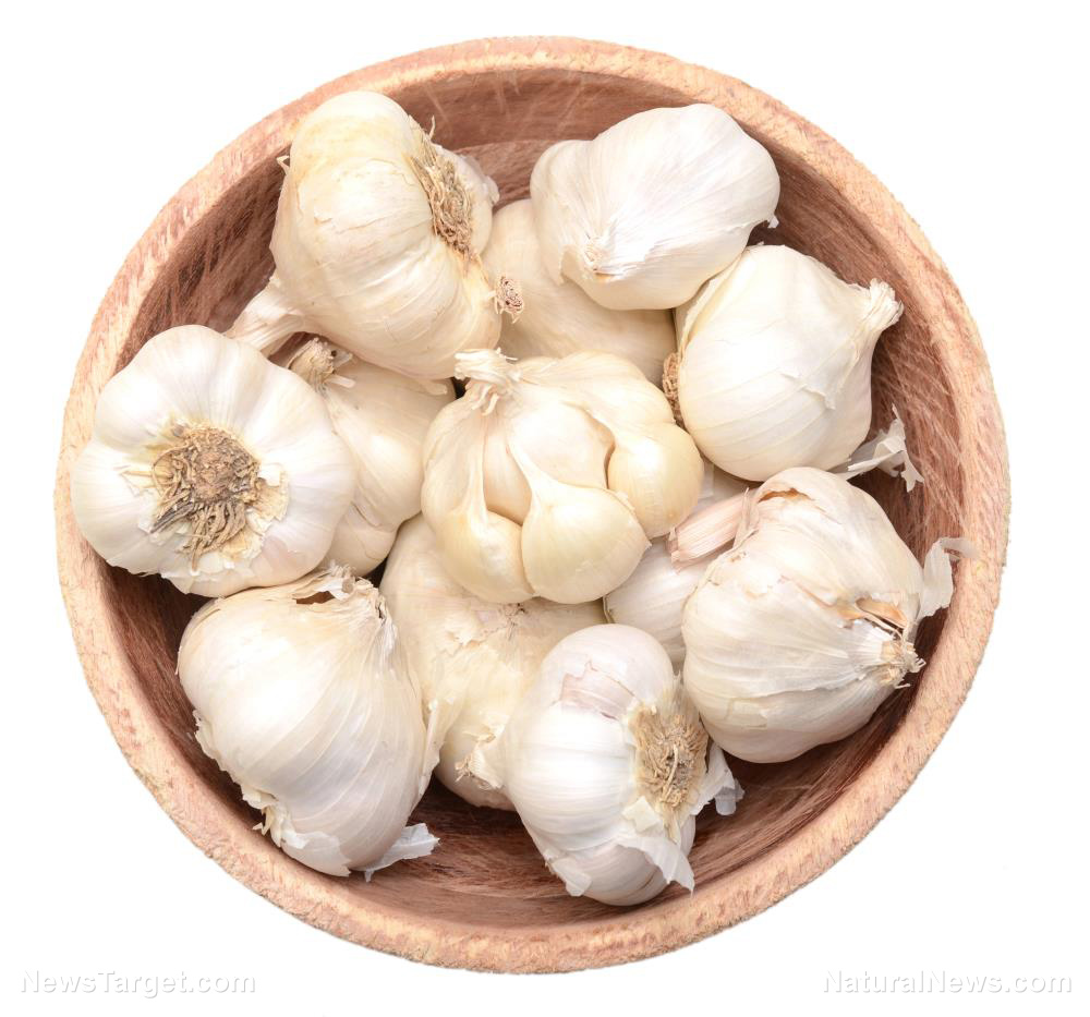 Image: Irrefutable evidence that garlic is good for you