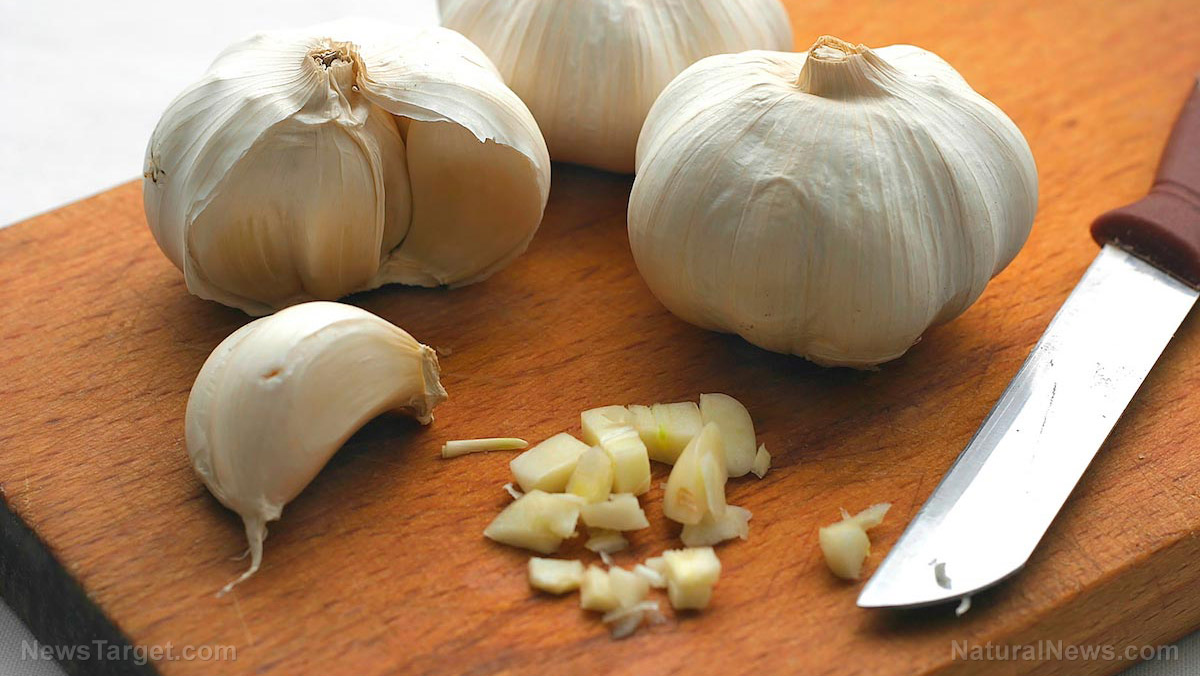 Image: Garlic found to help fight acute illness AND chronic disease through its support of the immune system