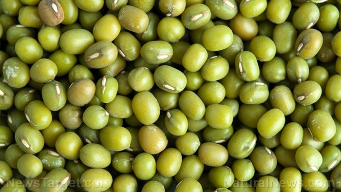 Image: Mung bean is a nutrient-packed, polyphenol-rich food that protects against degenerative disease