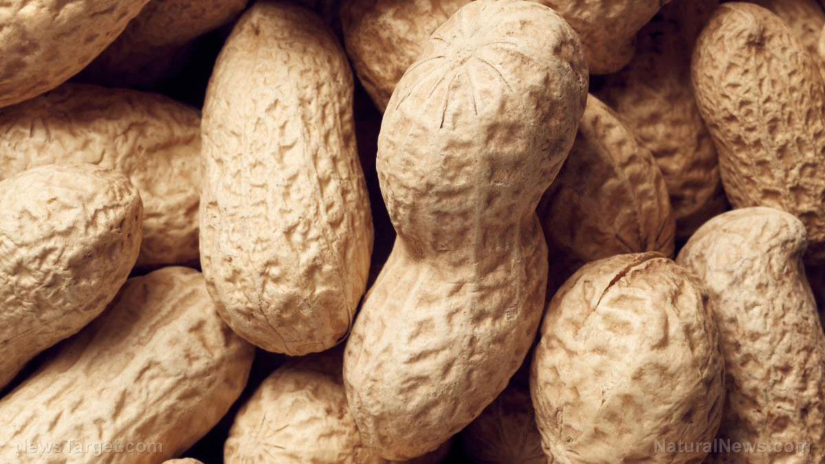 Image: Study suggests that eating peanuts instead of junk food can lead to better eating habits