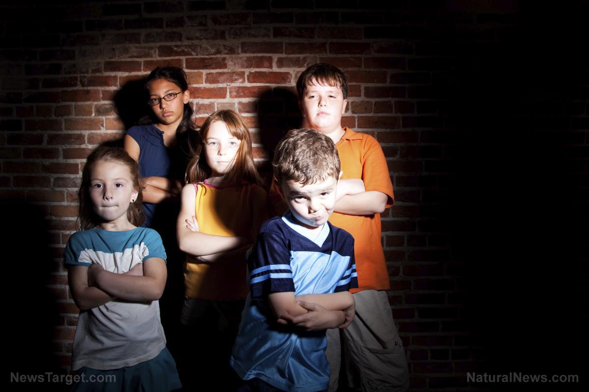 Afbeelding: Omega-3-vetzuren waarvan is vastgesteld dat ze gunstig zijn voor kinderen met gedragsstoornissen