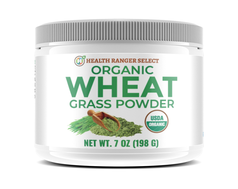 Image: Organic, glyphosate-tested Wheat Grass Powder now available at the Health Ranger Store (see the lab video)
