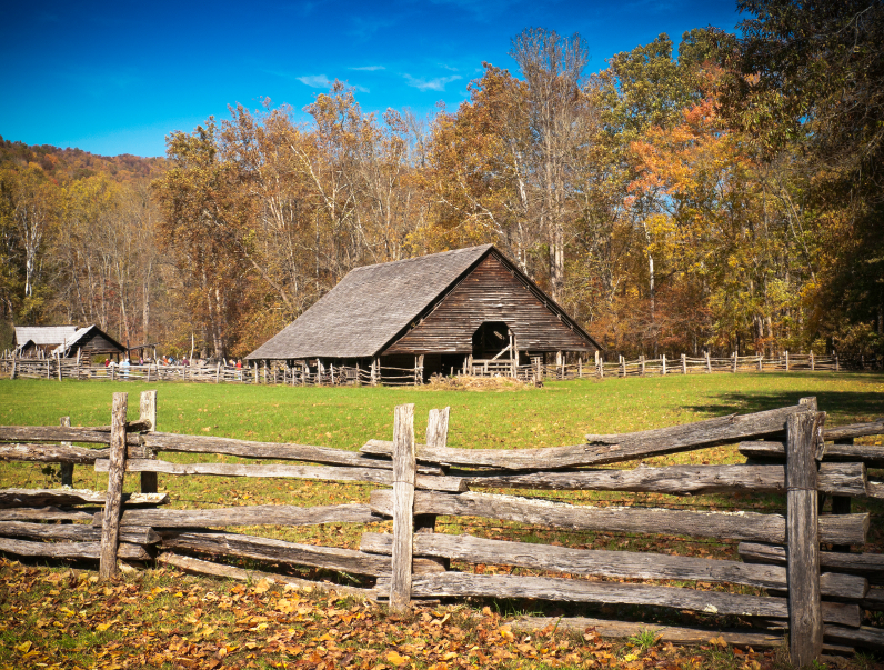 Image: 5 Important homesteading lessons to learn from American pioneers