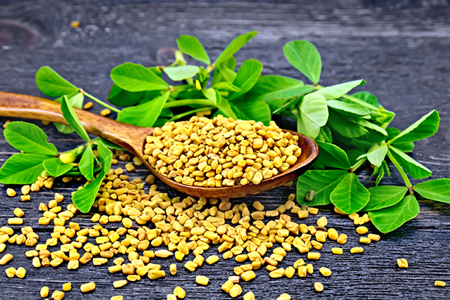 Image: Fenugreek reduces menopausal symptoms