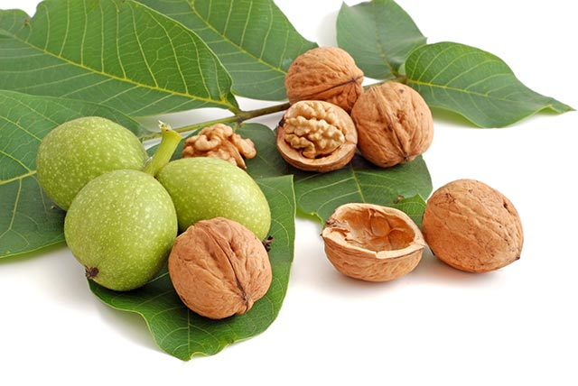 Image: The nutritional content and health benefits of pecans and walnuts