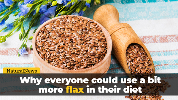 Image: Why everyone could use a bit more flax in their diet