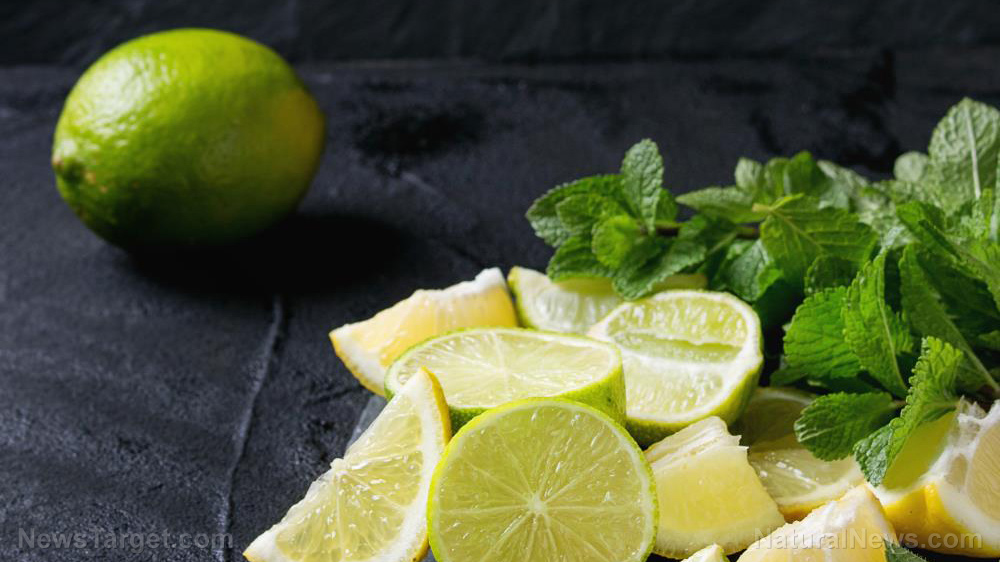 Image: Modified citrus pectin can minimize heavy metal toxicity, reveals study