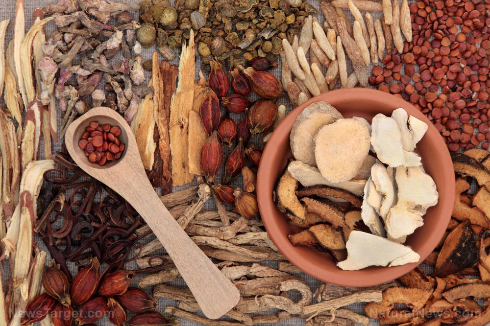 Image: Herbal mixture shown to alleviate inflammatory skin disorders