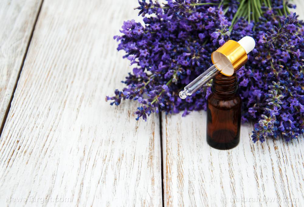 Image: Use lavender essential oil to reduce the frequency and severity of migraines
