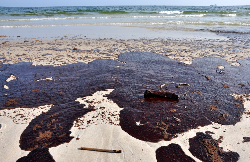 Image: Why oil spills are toxic: Scientists identify substance in crude oil that harms the hearts of fish and humans