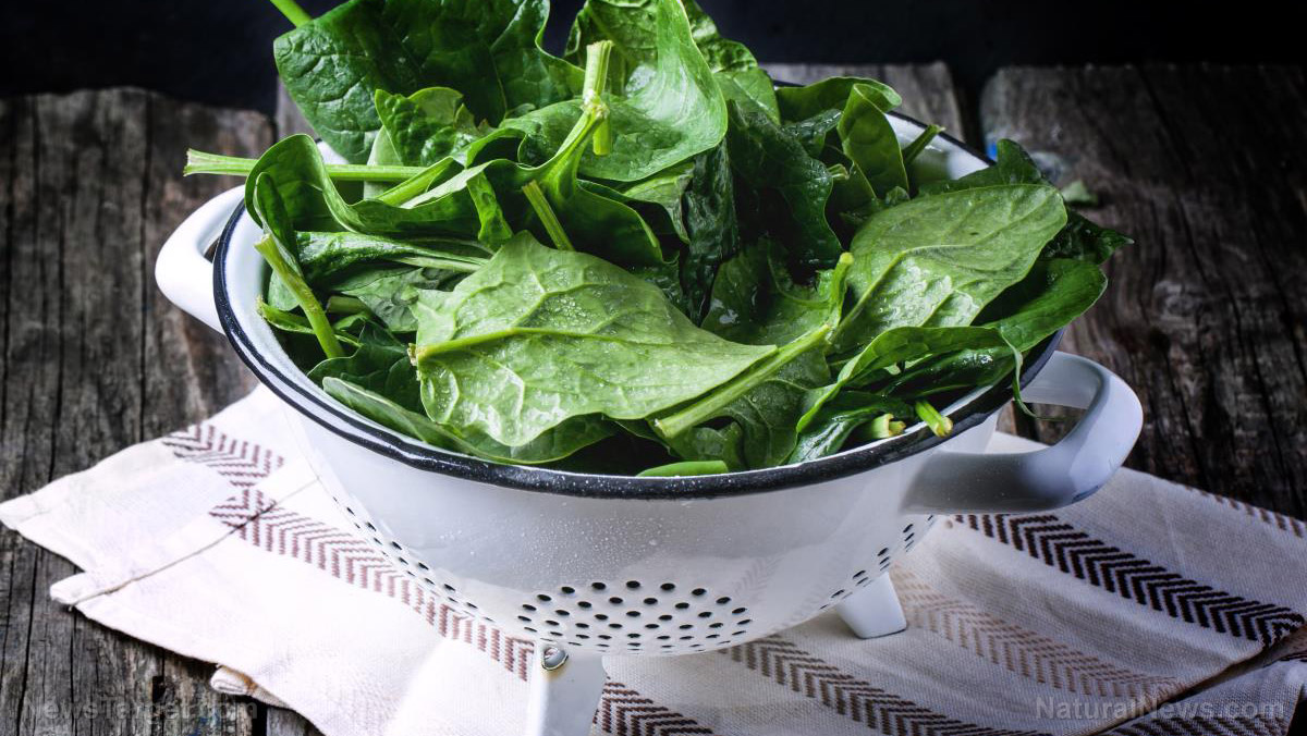 Image: A sugar found in leafy greens promotes gut health, new study concludes