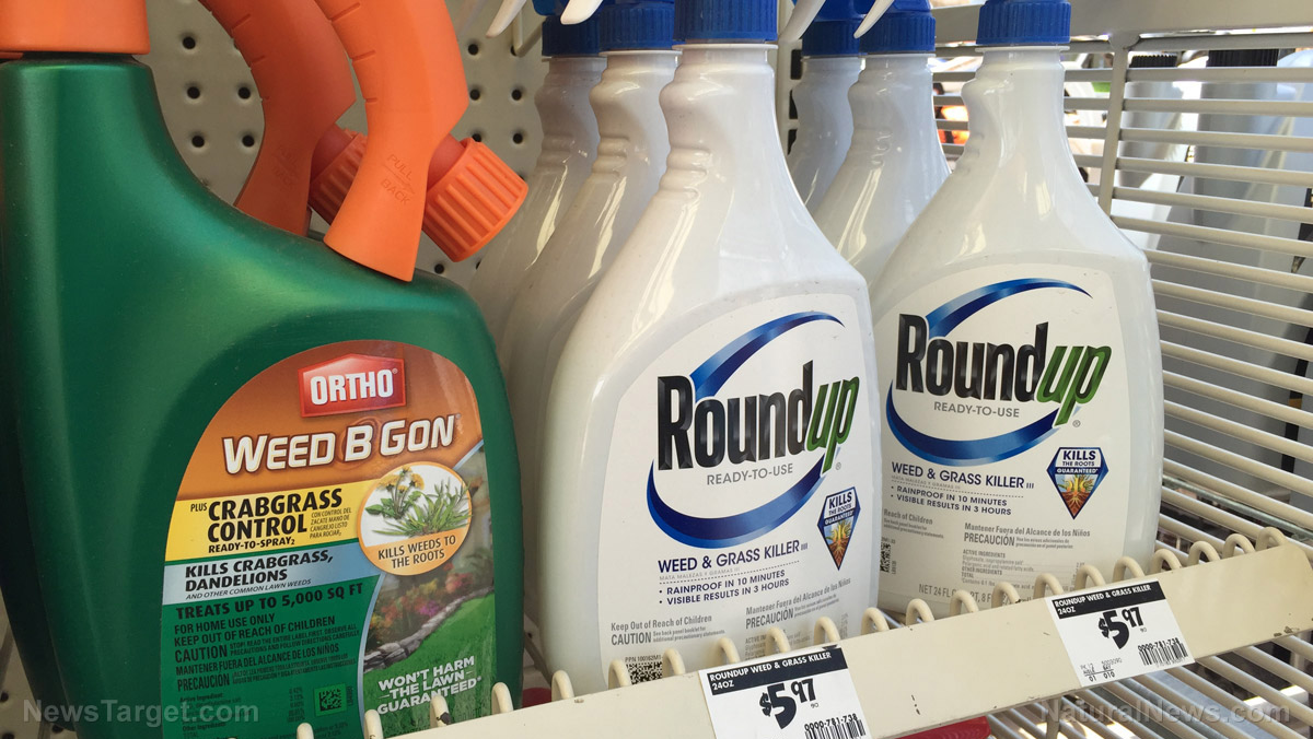 Image: The dangers of glyphosate, the endocrine-disrupting synthetic herbicide