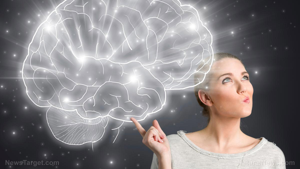 Image: Easy ways to boost your intelligence (Hint: all of them are natural)