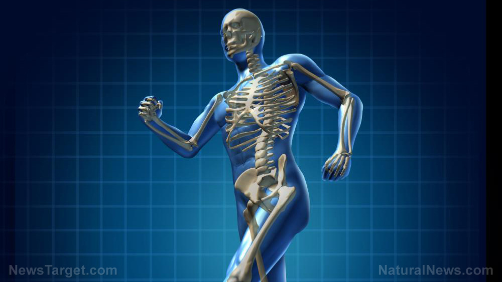 Image: Natural soy isoflavone daidzein can boost bone formation, research says