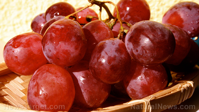 Image: Study reveals that intake of dietary grape powder can help promote cytokine production