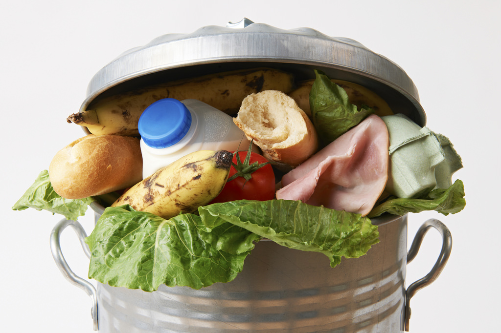 Image: Food waste is costing us all: The environmental and financial cost of spoiled food