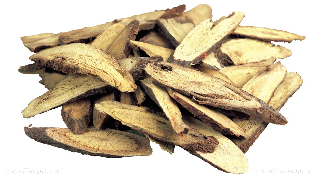 Image: Licorice plays an important role in the interaction between Shaoyao Gancao decoction and anticancer drugs