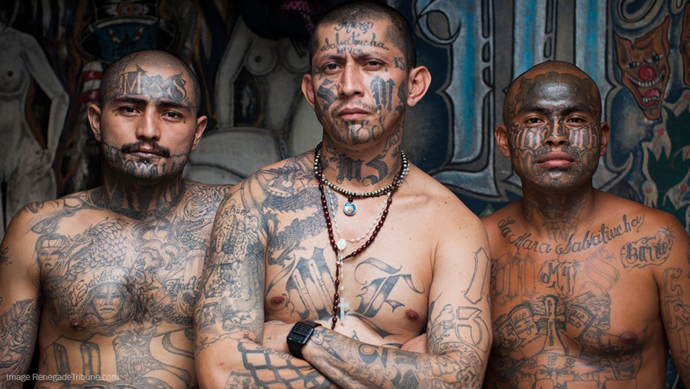 Image: Obama's DACA program tied to growth of deadly MS-13 gang which has spread to 22 states: End it NOW