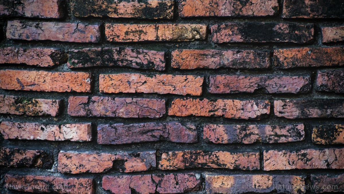 Image: Finally a use for biosludge: Scientists recycle biosolids into construction-ready bricks