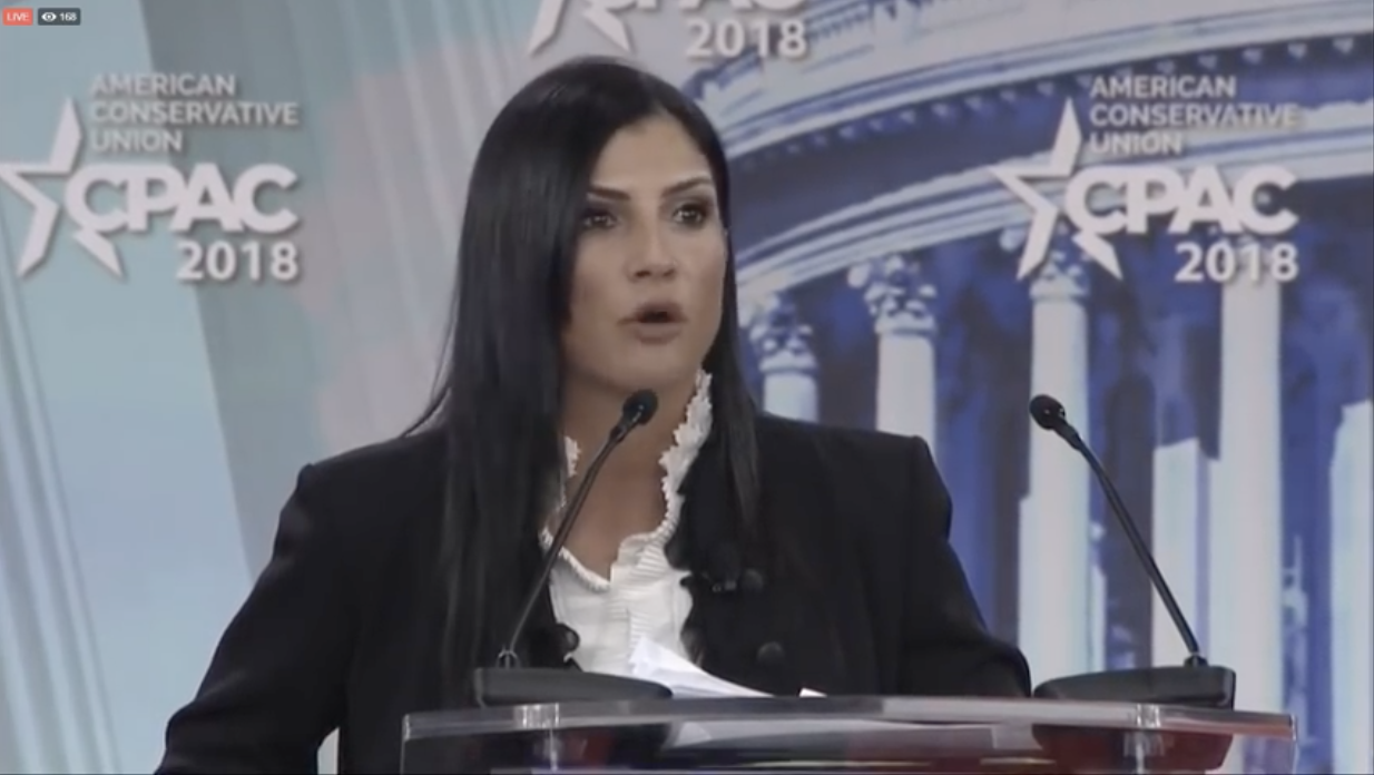 "Image: CNN hosts a modern-day Salem Witch Trial: Angry Leftists shout ""burn her!"" at NRA spokeswoman Dana Loesch"