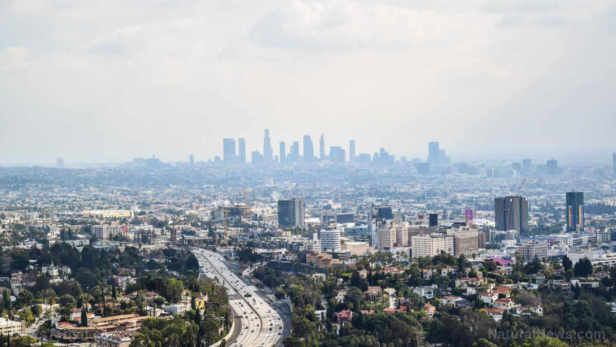 Image: Doctor warns Los Angeles collapsing into Third World health status… the filth of progressivism has become undeniable