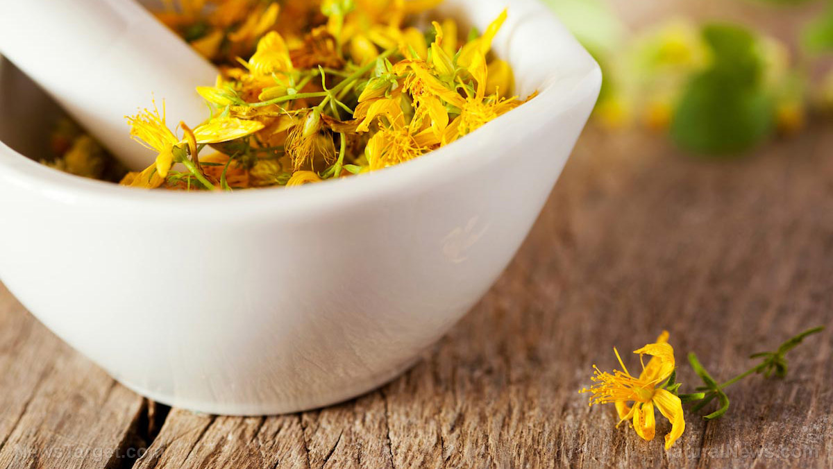 Image: The pros and cons of taking St. John's wort: What you need to know