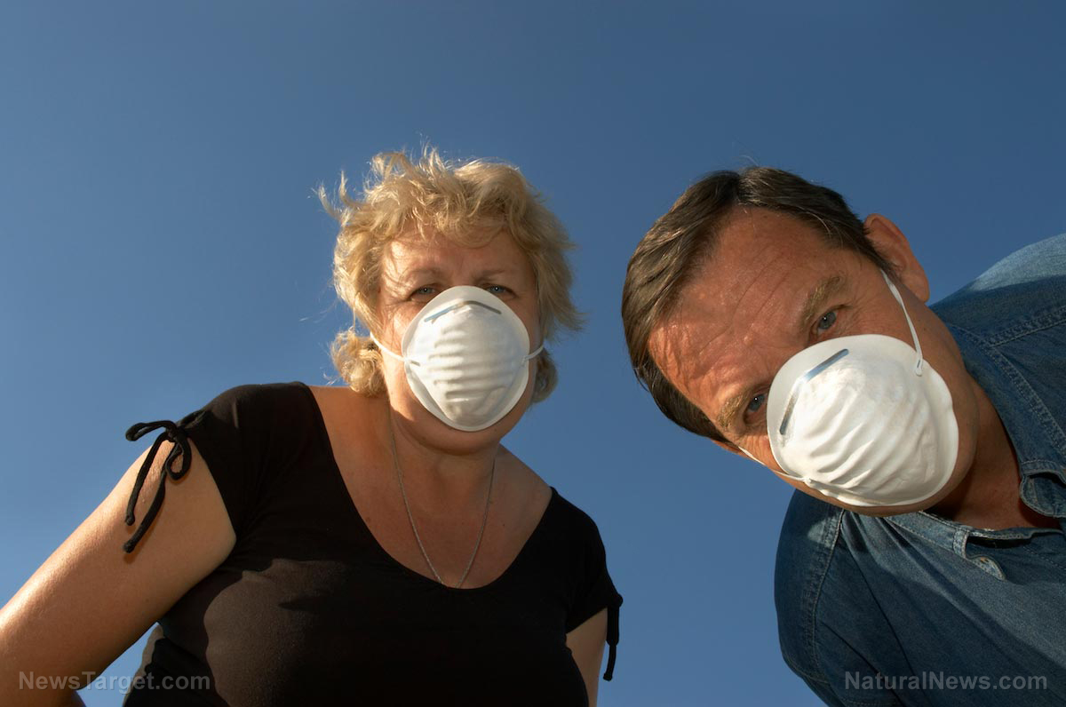 Image: Face masks found to protect hog farm workers (and their families) from drug-resistant staph bacteria