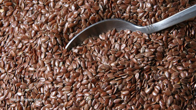 Image: Flaxseeds improve gut health and metabolic health, increase production of beneficial fatty acids