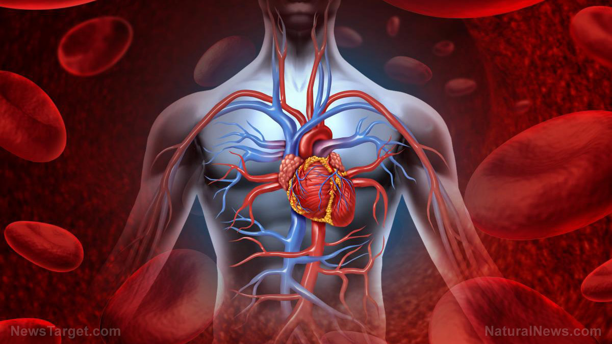 Image: Chinese Medicine can improve coronary artery disease by reducing inflammation: Study