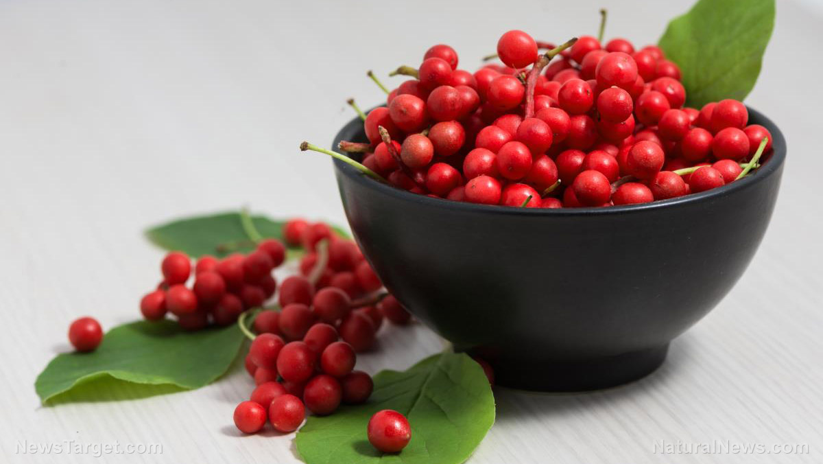 Image: Your liver loves schisandra extract: Research shows these berries reduce risk of NAFLD, liver dysfunction