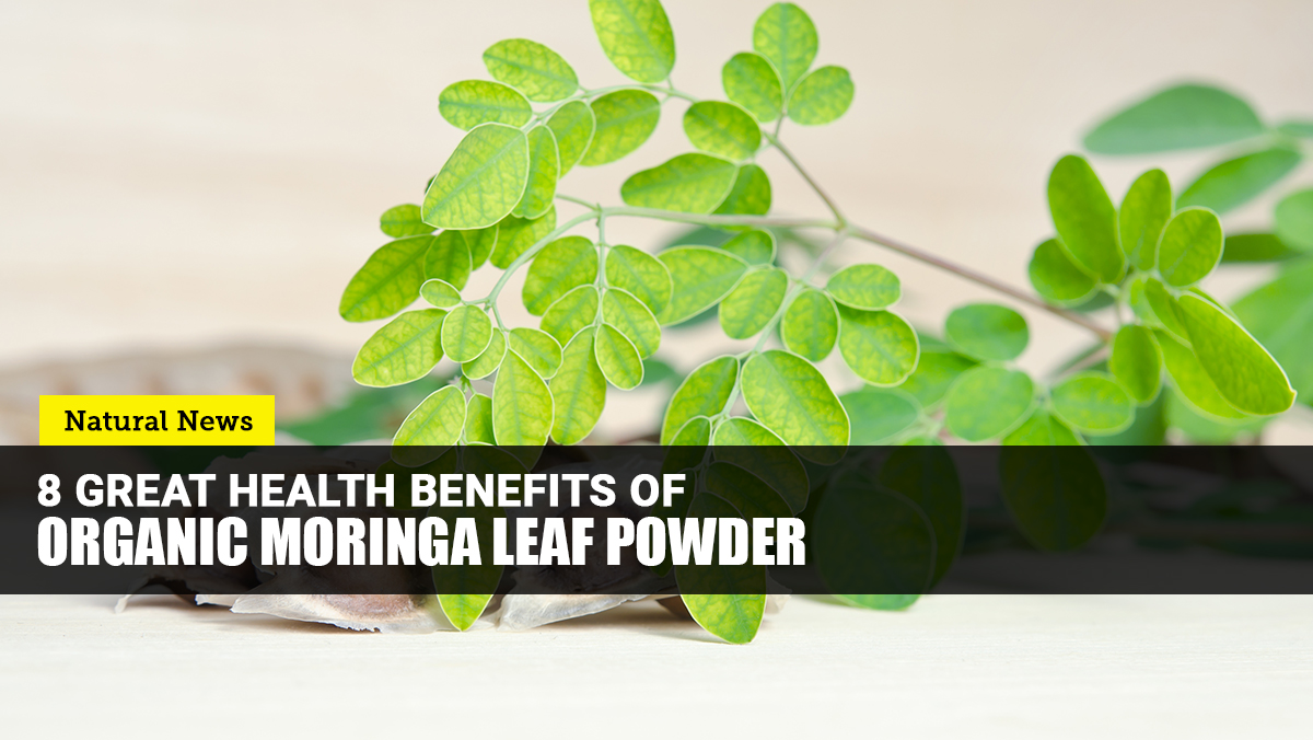 Image: Add organic MORINGA leaf powder to your daily routine to promote your overall health