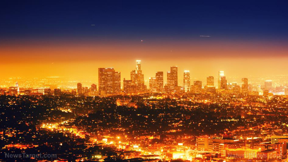 Image: Los Angeles faces an imminent bubonic plague outbreak due to rampant homelessness