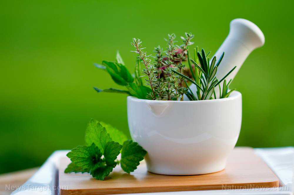 Image: Herbal medicine has antiviral effects that effectively treat the flu