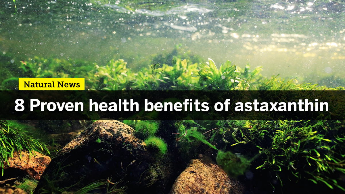 Image: Enhance your strength and stamina with Astaxanthin, one of nature's most potent antioxidants
