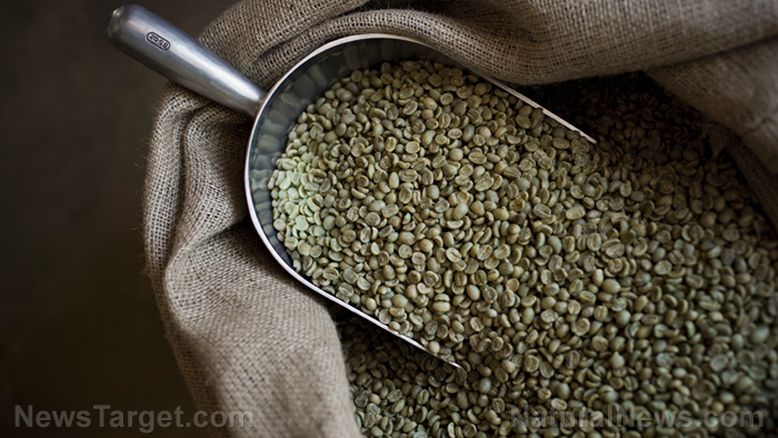Image: You should really try green coffee: It's proven to improve prediabetes symptoms