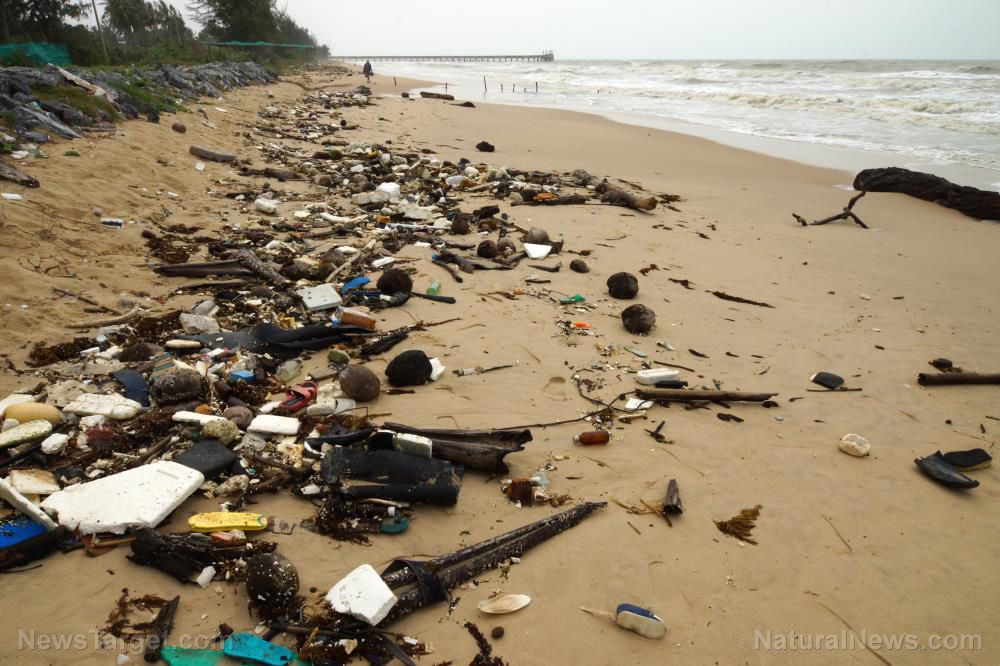 Image: Oceans have become TOXIC to humans, rendering beach-goers unable to breathe