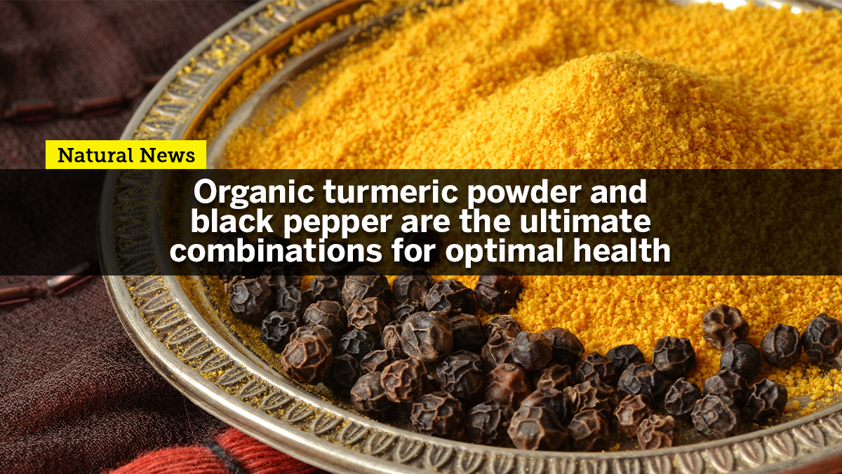 Image: Organic turmeric powder with black pepper is the ultimate combination for optimal health