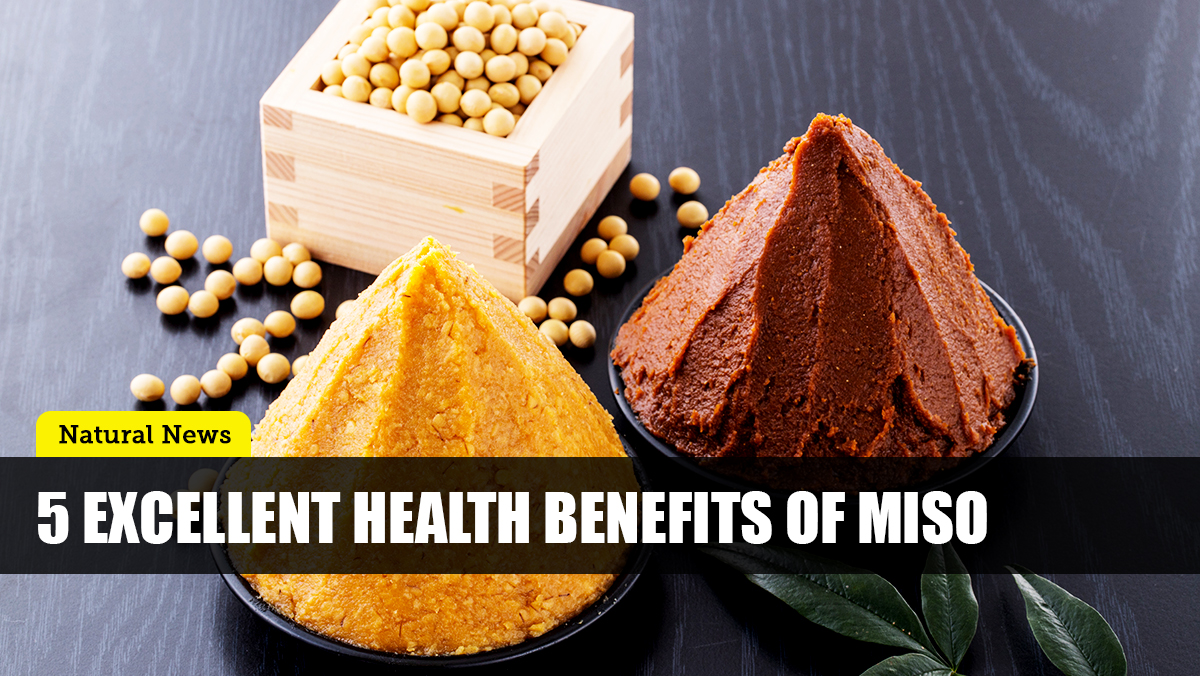 Image: Miso: Add this traditional Japanese condiment to your diet for optimal health