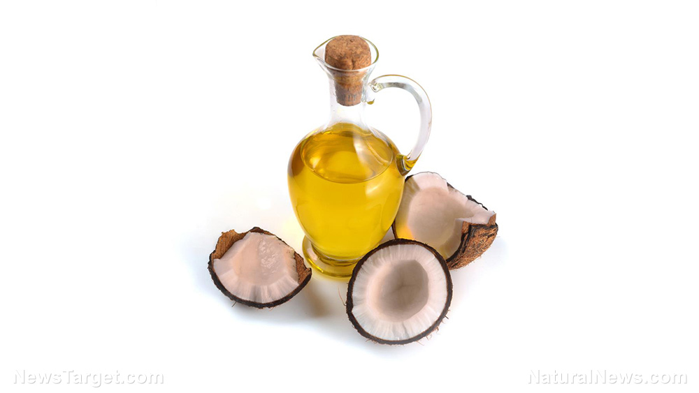 Image: The antifungal properties of coconut oil extend even to opportunistic pathogens: Study