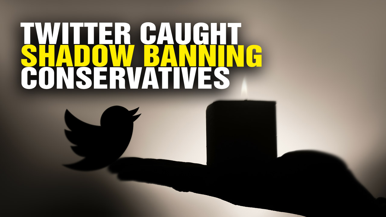 Image: Liberal logic: Since Twitter says it isn't shadow-banning conservatives, we should somehow believe Twitter's investigation of itself