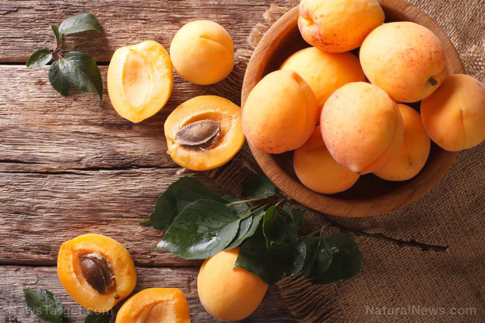 Image: Apricots, cherries, plums and more: 6 Nutrient-rich stone fruits you need to add to your diet