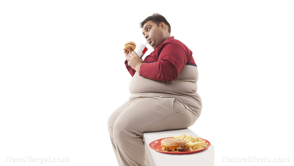 Image: Junk food is a cheap drug: Research explores the link between income, obesity, and psychological distress