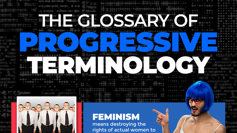 "Image: Confused by the language police? Behold the ""Glossary of Progressive Terminology"" that will clear it all up for you"