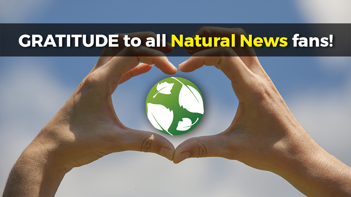 Image: The biggest bombshell Natural News stories of 2019