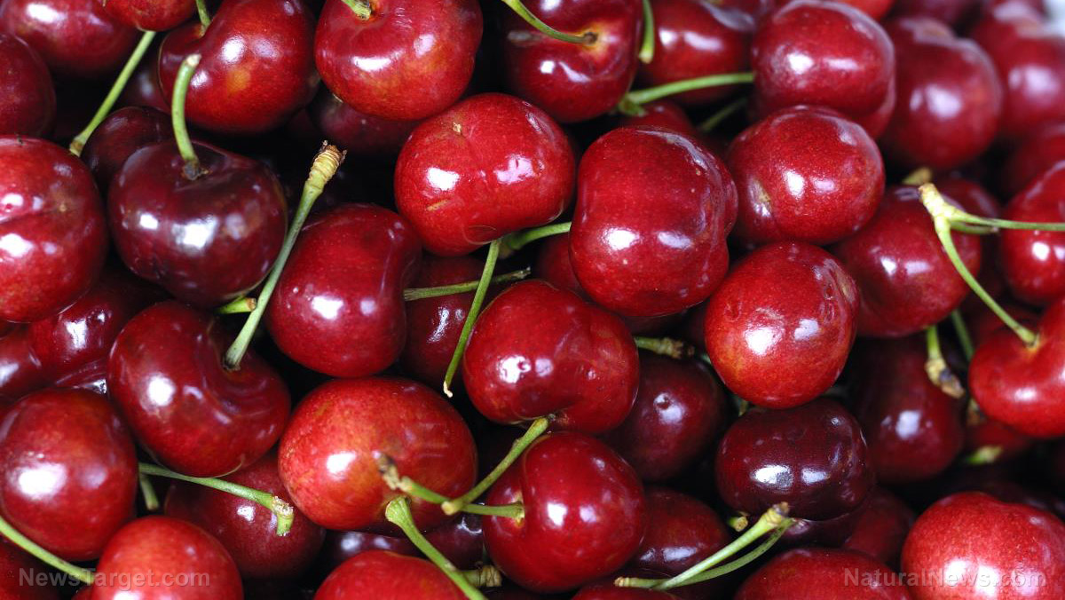 Image: Improve sleep quality and boost heart health: 7 Reasons to eat nutrient-rich cherries