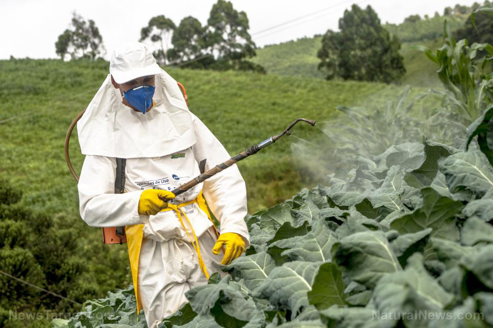 Image: Continued pesticide use ENDANGERS farm workers and children… why are the risks still being ignored?