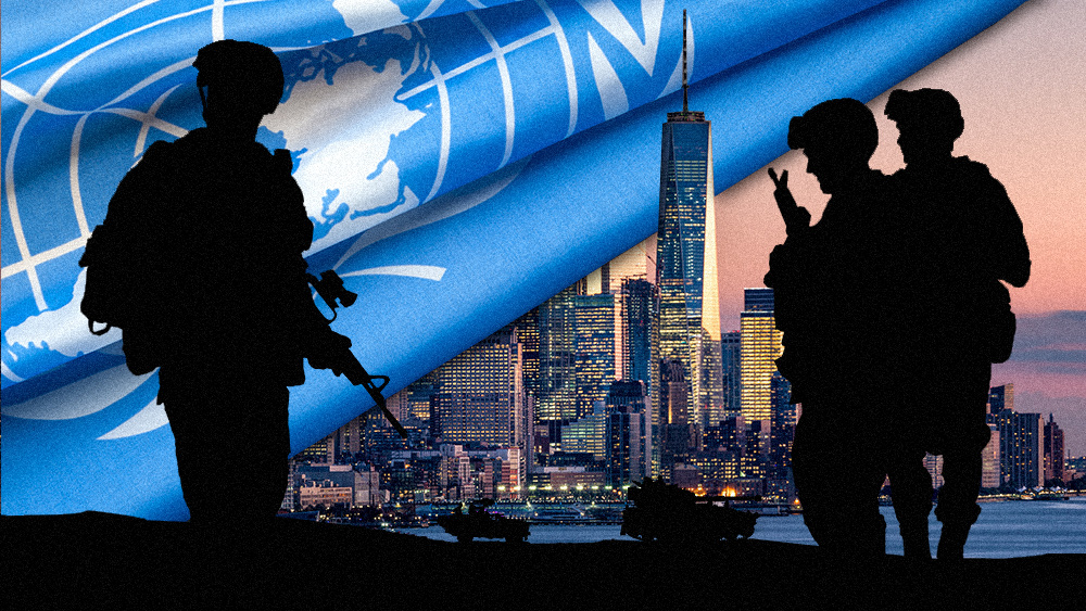 "Image: UN hiring ""disarmament officers"" to conduct ""field missions"" in New York as UN occupation plan for America goes LIVE"