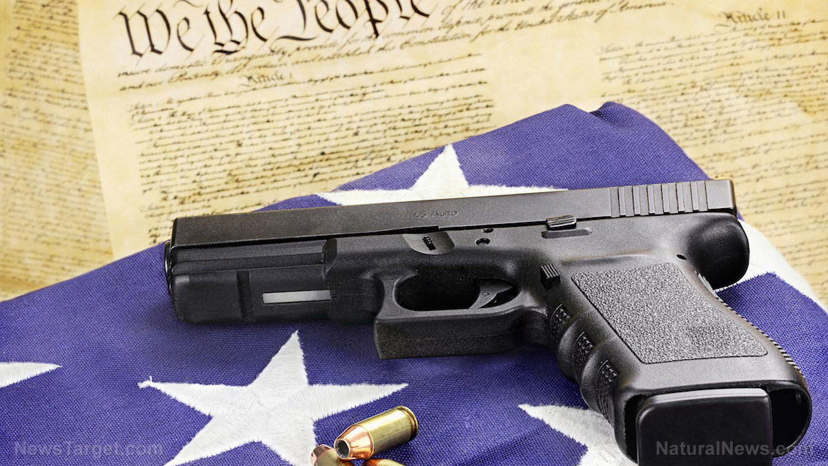 Image: Radical left's 1st item of business: Retire Bill of Rights, starting with the 2nd Amendment
